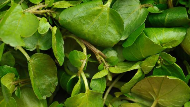 PHOTO: Watercress