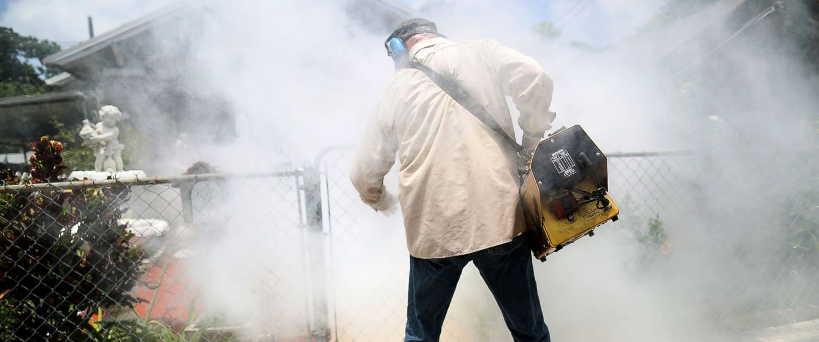 Good Morning America Zika Virus : Why zika virus is unlikely to become endemic in the