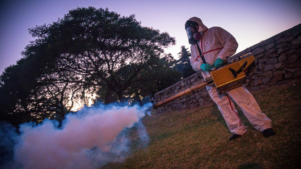 Good Morning America Zika Virus : Zika virus outbreak updates usoc hires infectious disease