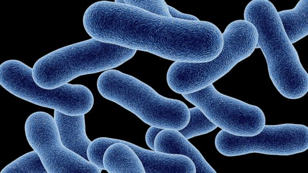http://a.abcnews.com/images/Health/Gty_Legionella_disease_mm_150730_16x9_608.jpg