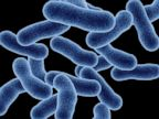 PHOTO: An outbreak of Legionnaires disease has infected at least 31 and led to 2 possible deaths said New York health officials.