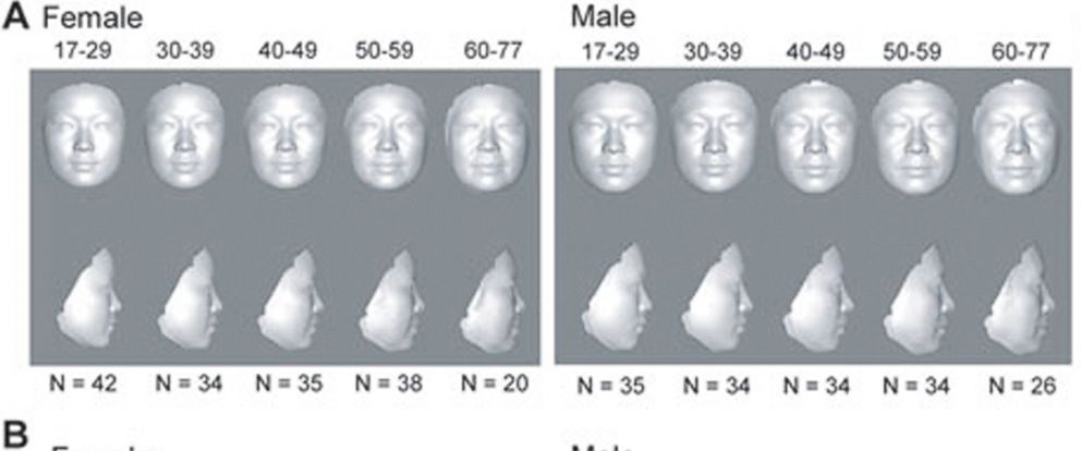 "PHOTO: Doctors are using 3-D facial imaging to discover your ""real age."""