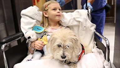 PHOTO: Kaelyn KK Krawczyk, 7, and her service dog, JJ, are wheeled into pre-op for her cystoscopy procedure at Duke University Hospital in Durham, N.C.