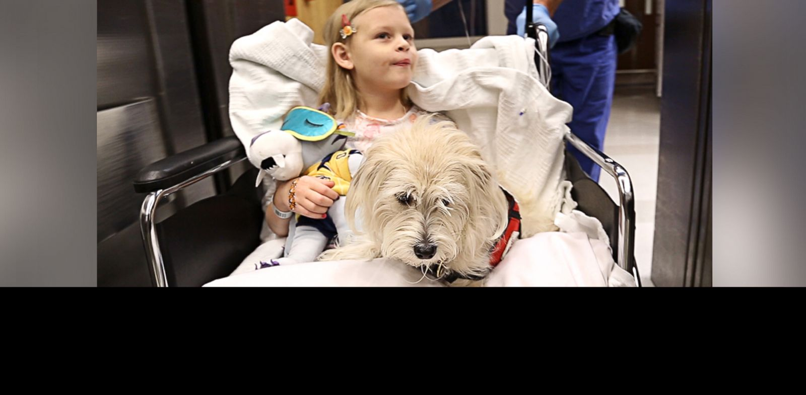 "PHOTO: Kaelyn ""KK"" Krawczyk, 7, and her service dog, JJ, are wheeled into pre-op for her cystoscopy procedure at Duke University Hospital in Durham, N.C."