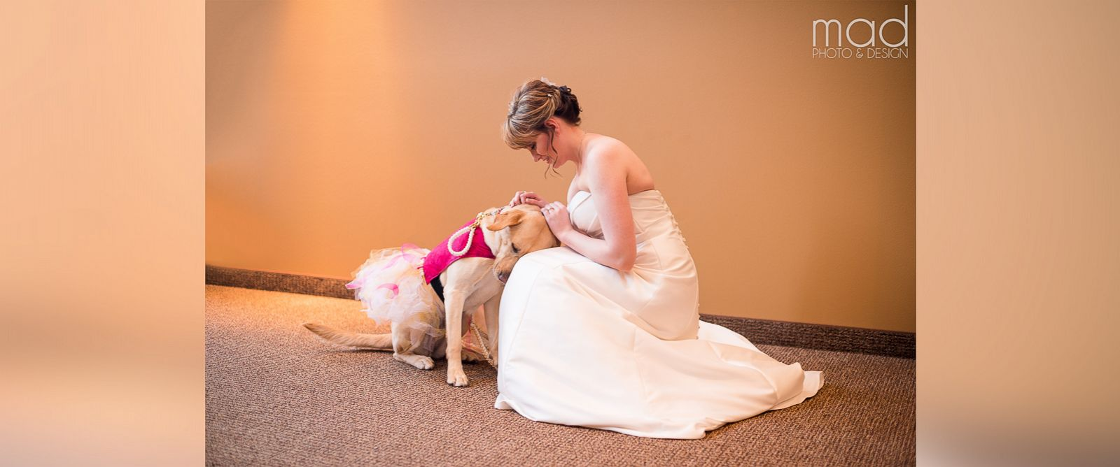PHOTO: Wedding photographer Maddie Peschong captured tender moments between bride Valerie Parrott and her service dog, Bella, at Parrotts recent wedding.