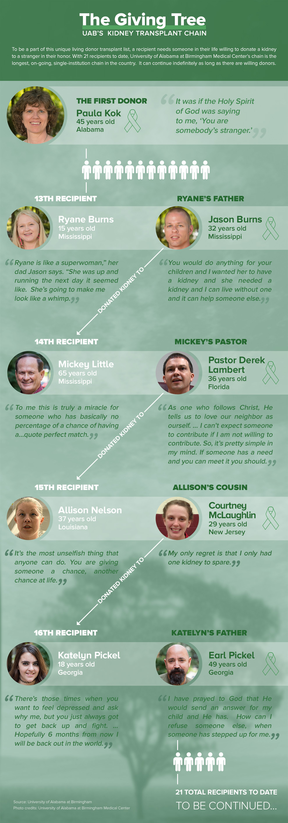 The Giving Tree - UAB Kidney Transplant Chain Infographic