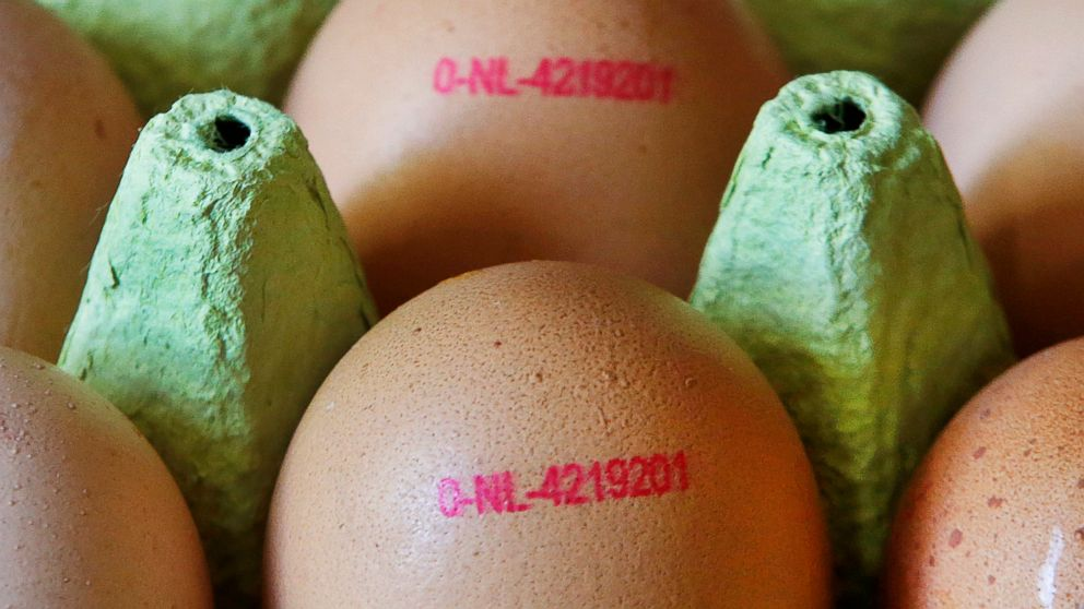 German supermarket chain yanks eggs amid pesticide scare