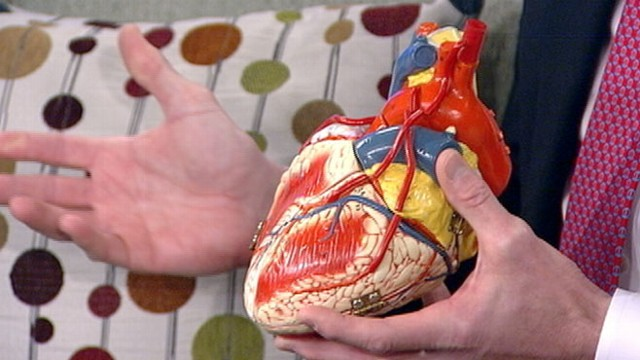 VIDEO: Dr. Chris Magovern discusses little-known facts about the heart.