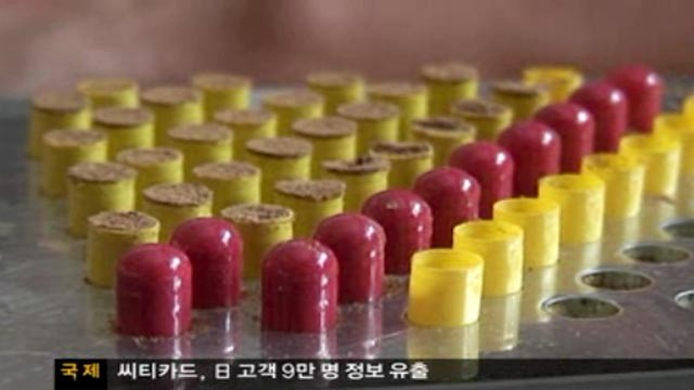 PHOTO: A Korean documentary has revealed that pills containing dried human remains and dangerous bacteria are being smuggled into their country.