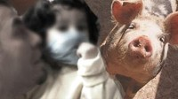 PHOTO As U.S. officials warn that the number of swine flu cases in the country are likely to increase, there are a number of steps Americans can do to protect themselves and their children from this unique virus.