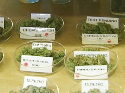 Video: N.J. approves the use of marijuana for medical purposes.