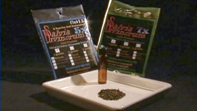 "VIDEO: The DEA calls the herb, which is legal in some states, a ""drug of concern."""