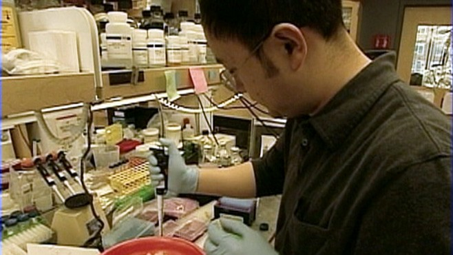VIDEO: U.S. District Courts ruling freezes federally funded stem cell research.