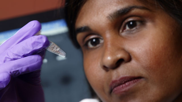 Child 'Functionally Cured' of HIV