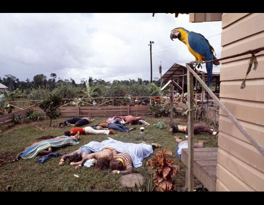 Jonestown Poison