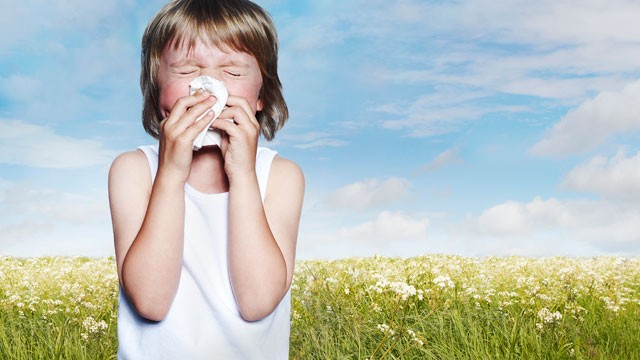 PHOTO: Spring this year could be the worst season ever for allergies with the season starting earlier and extending into October.