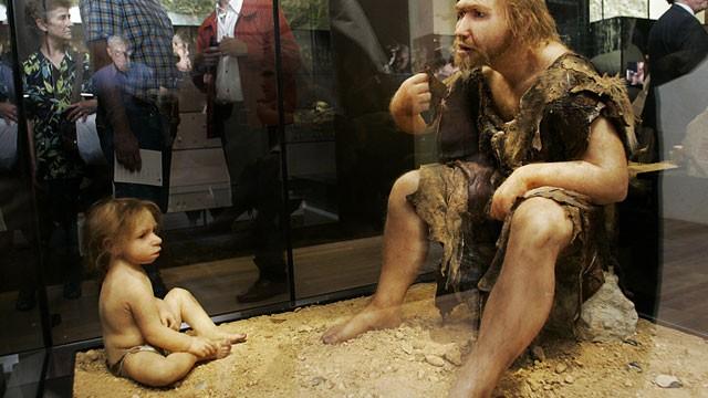 Neanderthal Baby Harvard Prof Says Nean...