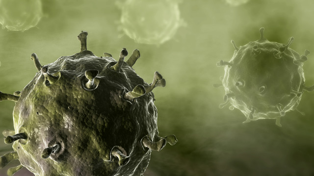 PHOTO: Illustration of avian flu virus