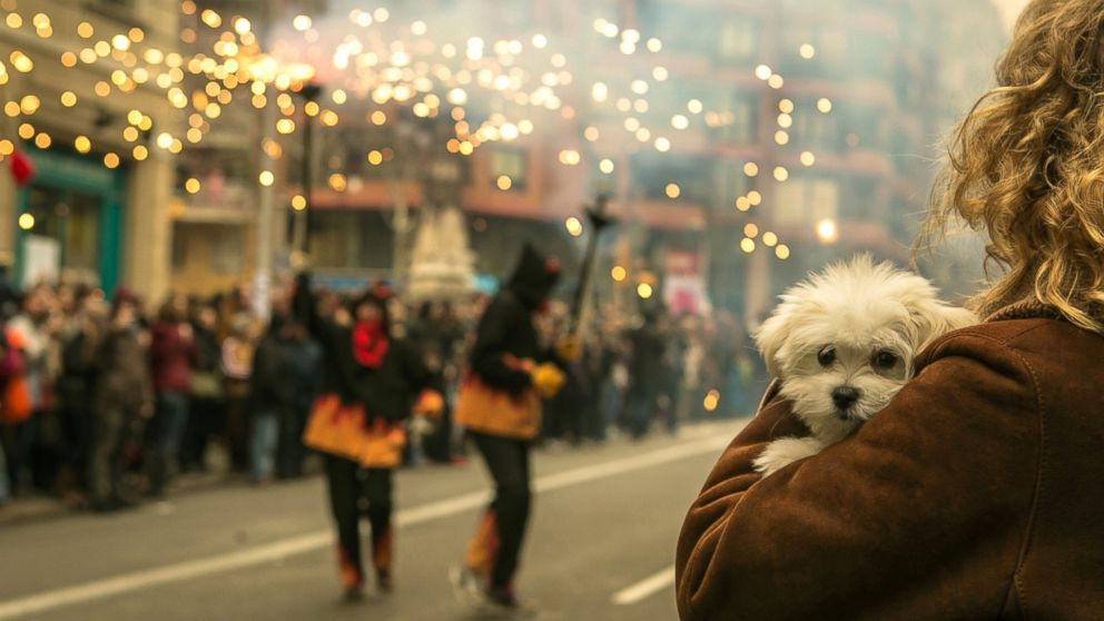 PHOTO: A woman holds a puppy while during the celebration of the Chinese New Year in Barcelona, Spain on Feb 1, 2014.