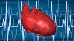 PHOTO: Heart health is featured in February on Call+.