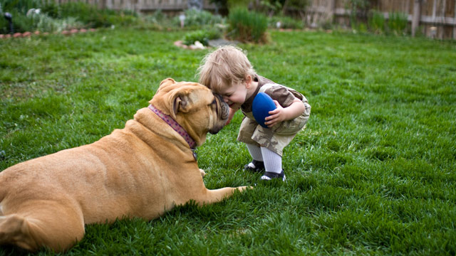 PHOTO: A new study found dogs and cats may offer protection against respiratory illnesses in the first year of life.