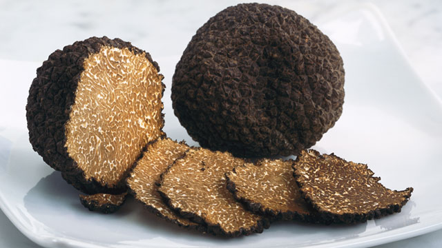 PHOTO: Truffles