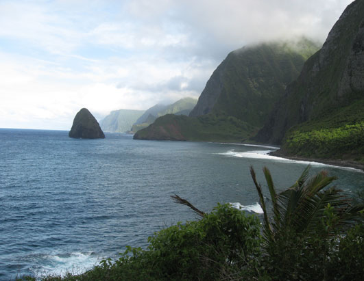 Loss and Endurance: A History of Kalaupapa