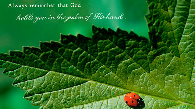 "PHOTO: Hallmark greeting card reads, ""Always remember that God holds you in the palm of His hand..."""