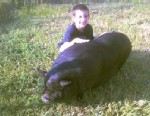 Photo: Autistic Boy Devastated After City Bans Pet Pig: Family Says Pot Bellied Pig Helped Anthony Pia Function with Autism