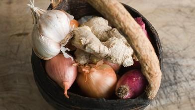 nc garlic onion ginger ll 121206 wb