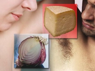 Photo: Men smell of cheese and women of onions
