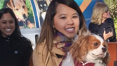PHOTO: Ebola survivor Nina Pham is reunited with her dog Bentley at the Dallas Animal Services Center in Dallas, Nov. 1, 2014.