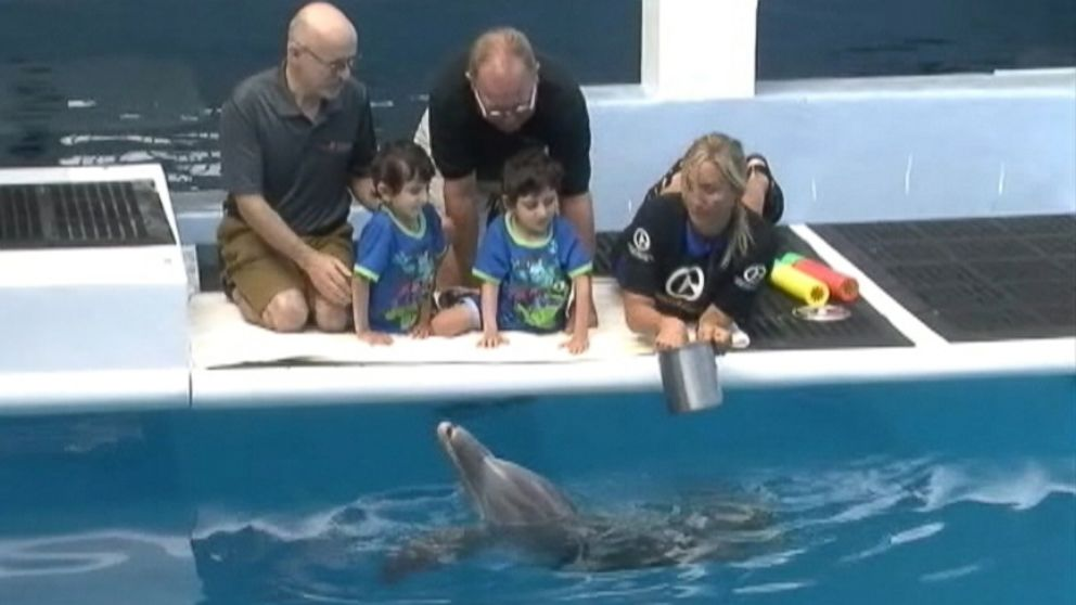 The 4-year-old boys prosthetic legs and Winters prosthetic tail were made by the same team.