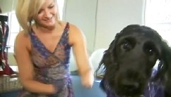 VIDEO: Labradoodle named Belle is trained to help Aimee Copeland with her medication and to retrieve things.