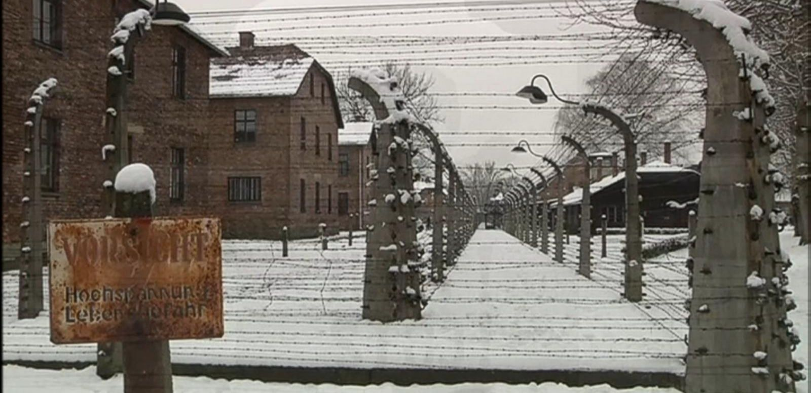 VIDEO: Holocaust Survivors Visit Auschwitz on 70th Anniversary of Liberation