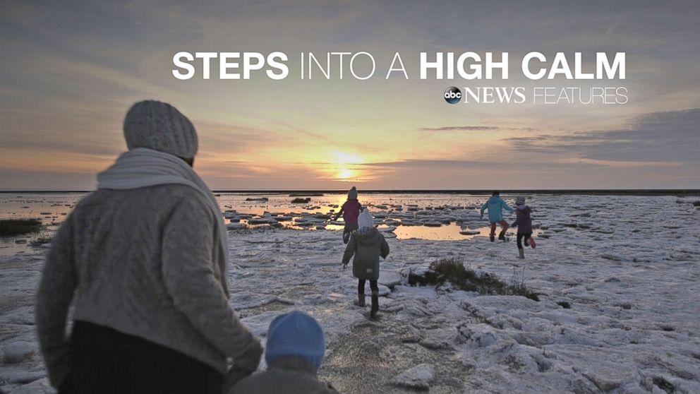 نتيجة بحث الصور عن STEPS INTO HIGH CALM