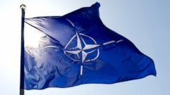 VIDEO: NATO: The Basics