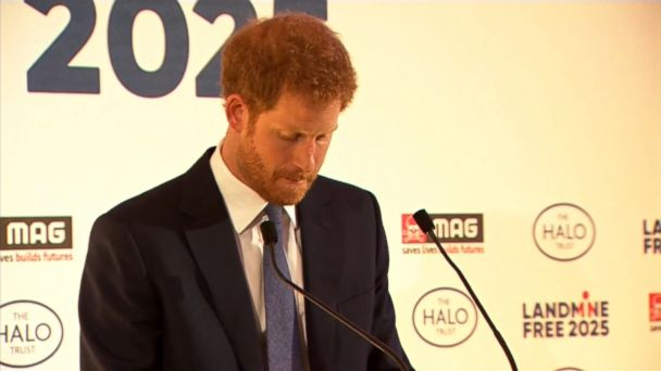 Prince Harry paid tribute to his late mother, Diana Princess of Wales, in a speech urging people to carry on her fight against landmines.