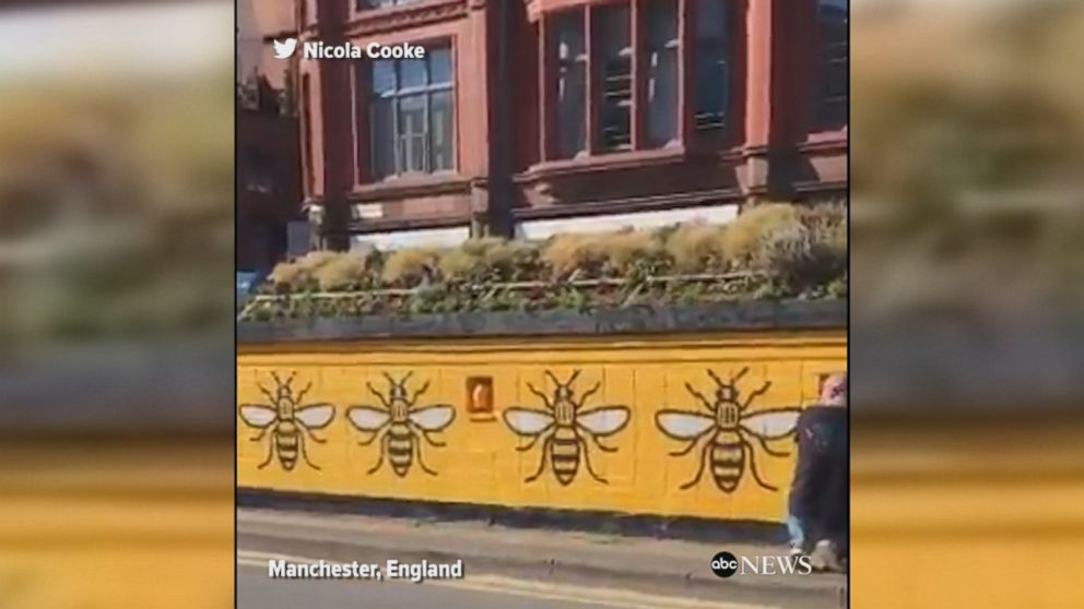 Man paints worker bees - one of the symbols of the city of Manchester - on a wall at Manchester's Stevenson Square while dozens of people wait outside of a tattoo parlor to get bee tattoos for charity.