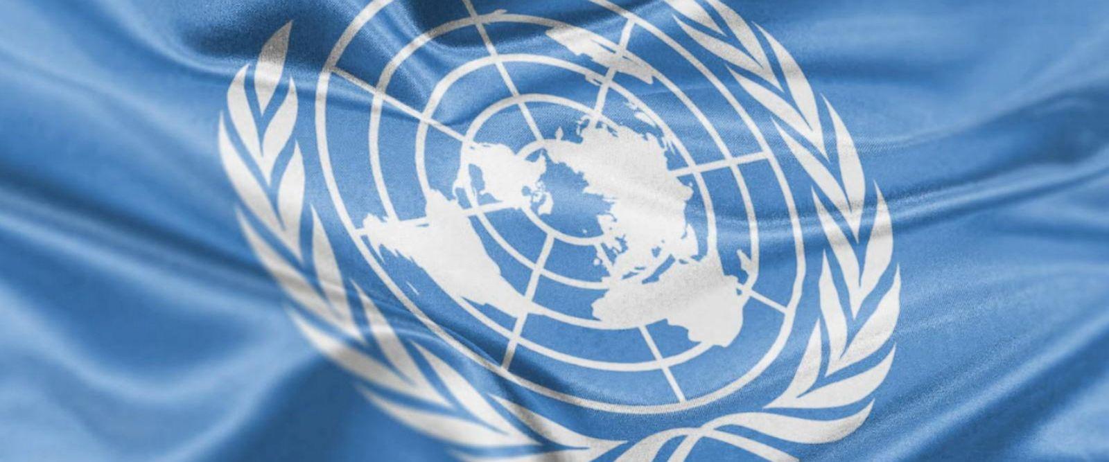 VIDEO: United Nations: The basics