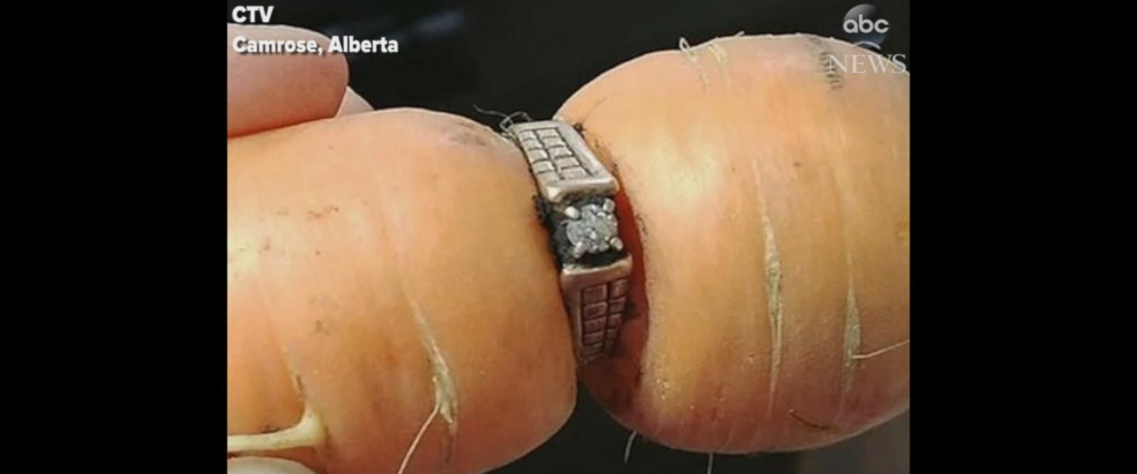 VIDEO: Lost engagement ring turns up in family's garden after 13 years