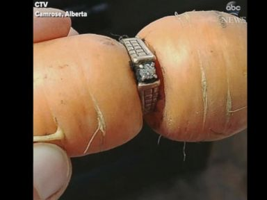 WATCH:  Lost engagement ring turns up in family's garden after 13 years