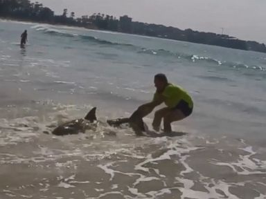 WATCH:  Man tries to drag beached shark back to sea