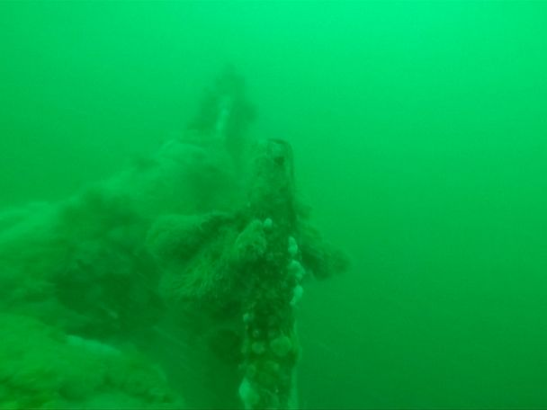 WATCH:  WWI U-boat found off Belgian coast