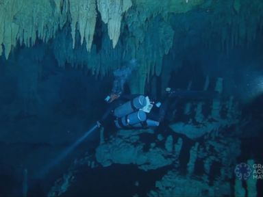 WATCH:  Mexico discovers world's longest underwater cave in Mayan heartland