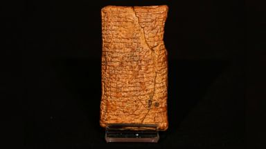 PHOTO: The 4000 year old clay tablet containing the story of the Ark and the flood stands on display at the British Museum in London, Friday, Jan. 24, 2014.