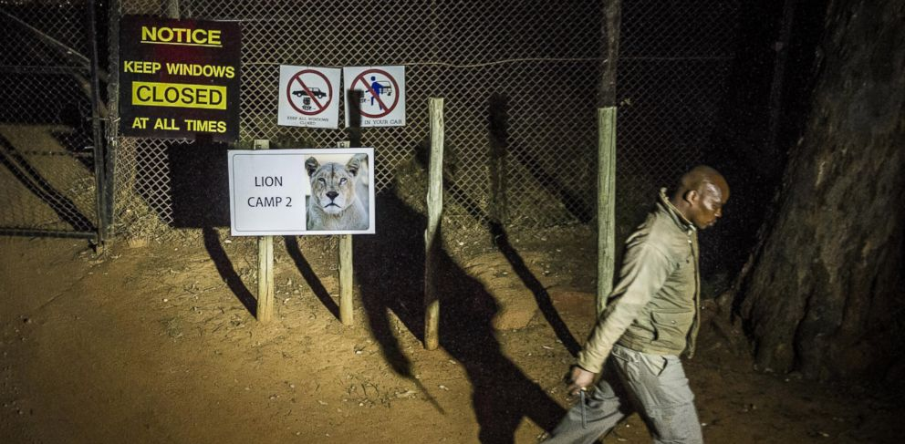 PHOTO: A man walks past warning signs at the Lion Park, where a lion killed an American woman and injured a man driving through a private wildlife park, near Johannesburg, South Africa on June 1, 2015.