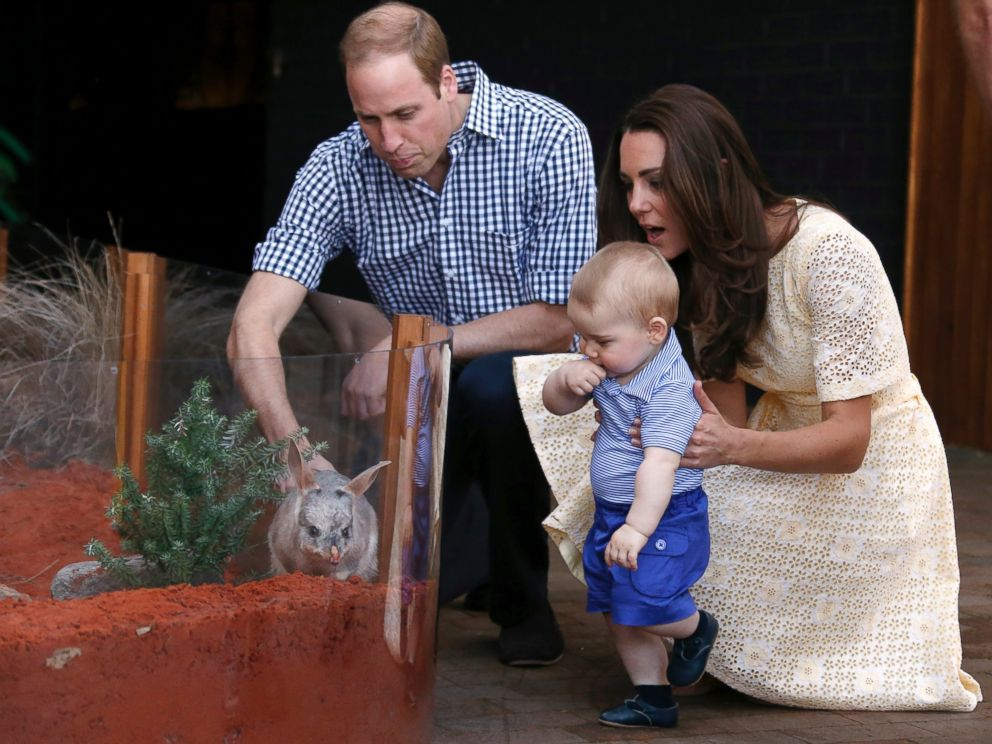 PHOTO: Britains Kate, the Duchess of Cambridge, and her husband Prince William watch as their son Prince George looks at an Australian animal called a Bilby, during a visit to Sydneys Taronga Zoo, Australia Sunday, April 20, 2014.