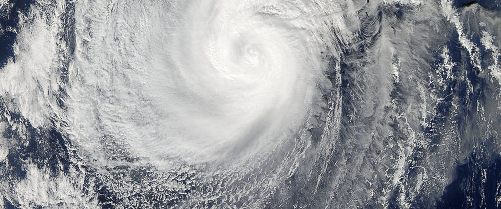 PHOTO: A picture captured by NASAs Aqua satellite of Typhoon Nuri, Nov. 5, 2014.