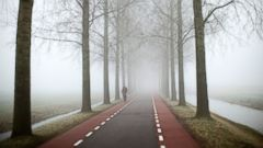 PHOTO: A cyclist rides on a foggy day in Amstelveen, Jan. 23, 2015.